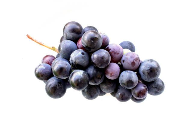 black grapes on white background - grapes imagens e fotografias de stock