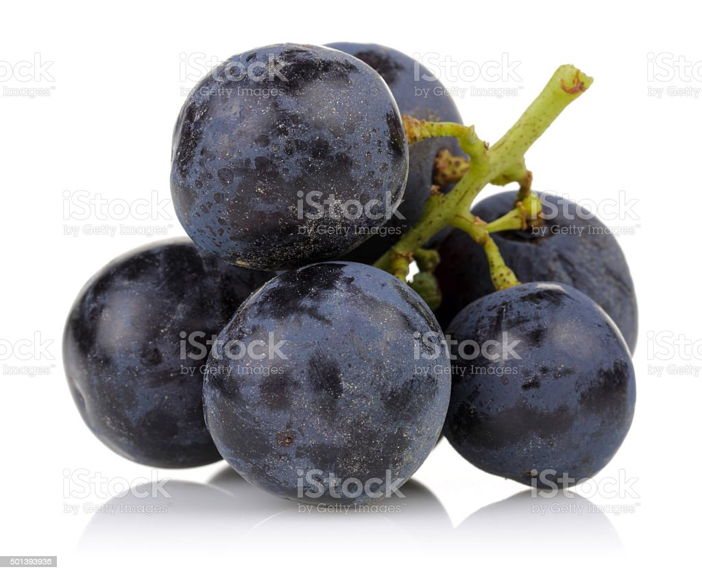 Black grapes stock photo