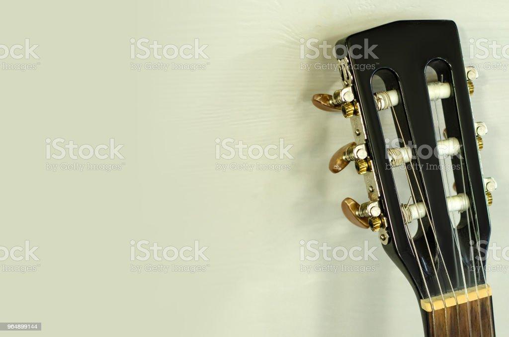 Black Guitar Vulture royalty-free stock photo