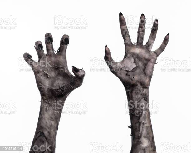 Black hand of death the walking dead zombie theme halloween theme picture id1045515114?b=1&k=6&m=1045515114&s=612x612&h=hbkgrrtih9vrscxehbhr9rjuvthht ga2qwxmu4d05o=