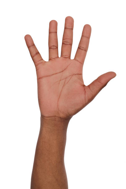 Black hand shows number five isolated stock photo