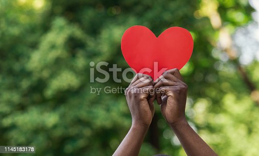 Love, charity and kindness concept, copy space. Black male hands holding red paper heart on green nature background.