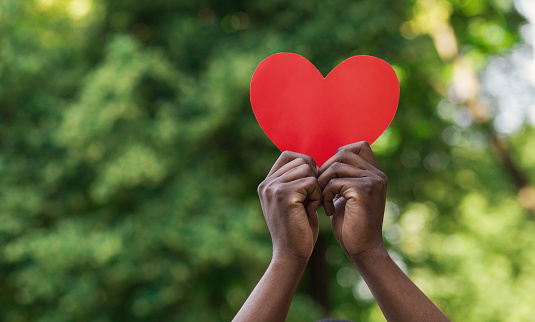 Black Hands Holding Red Paper Heart On Green Background Stock Photo Download Image Now Istock