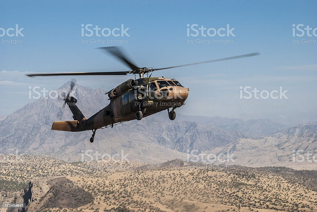 Black Hawk stock photo