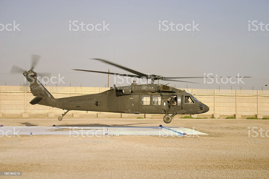 Black Hawk royalty-free stock photo
