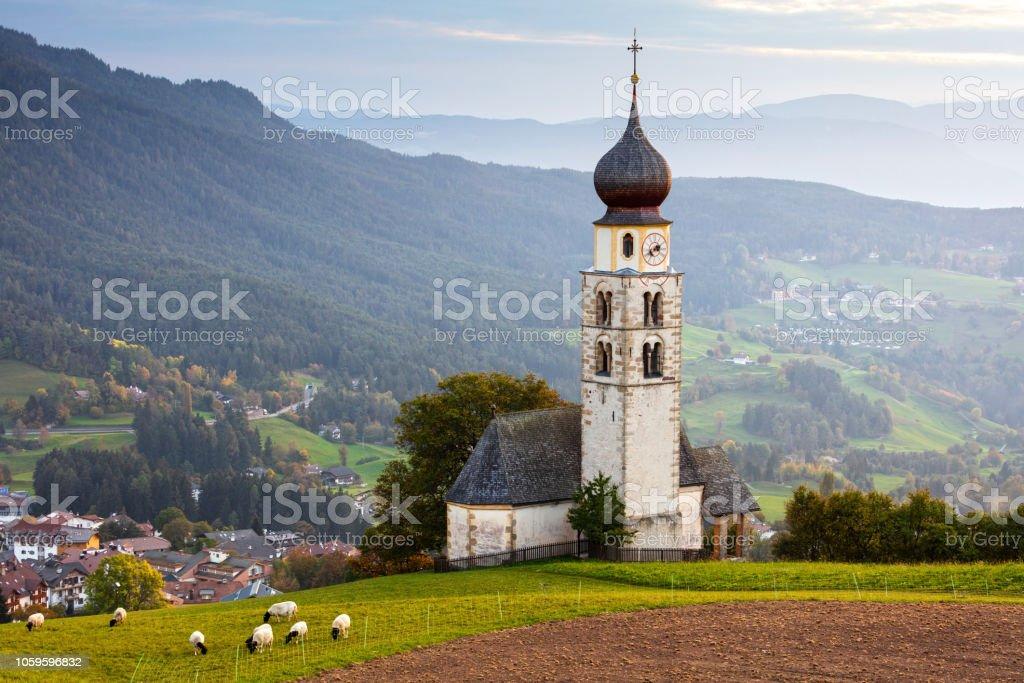 Black head sheep graze by a church in Alps stock photo