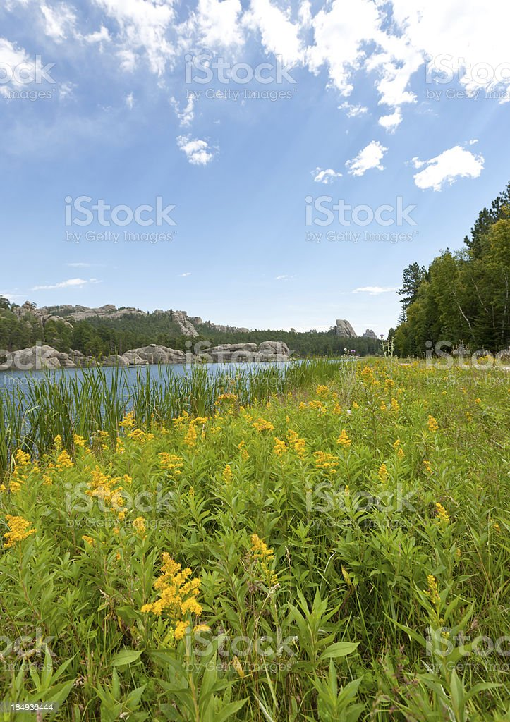 Black Hills landscape with a lake; South Dakota stock photo