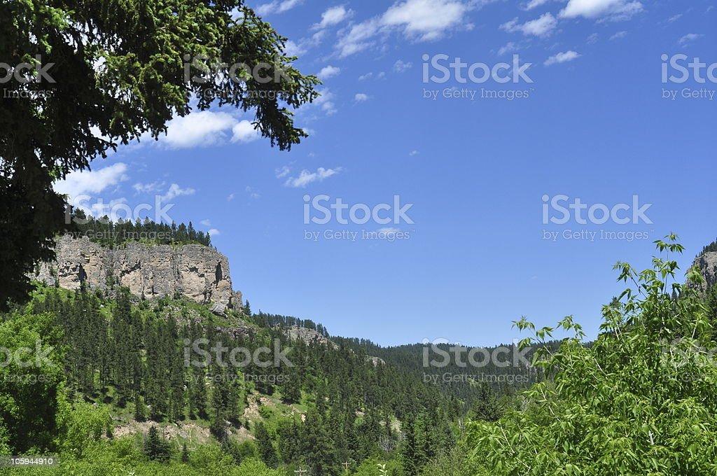 Black Hills royalty-free stock photo
