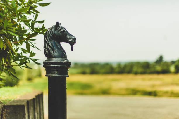 Schwarzes Pferd Kopf Post – Foto