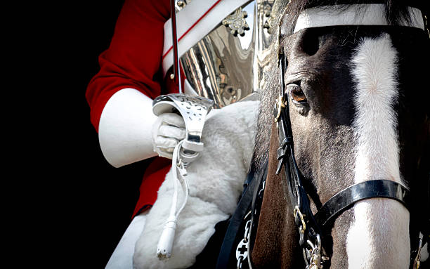 Black horse mounted by a british royal guard stock photo