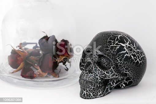 Black human skull and dried red roses in glass bottle isolated on white background. Day of Dead (dia de los muertos - in mexican culture) or gothic Valentines day concept for celebration