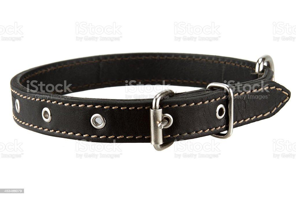 black leather dog collar stock photo