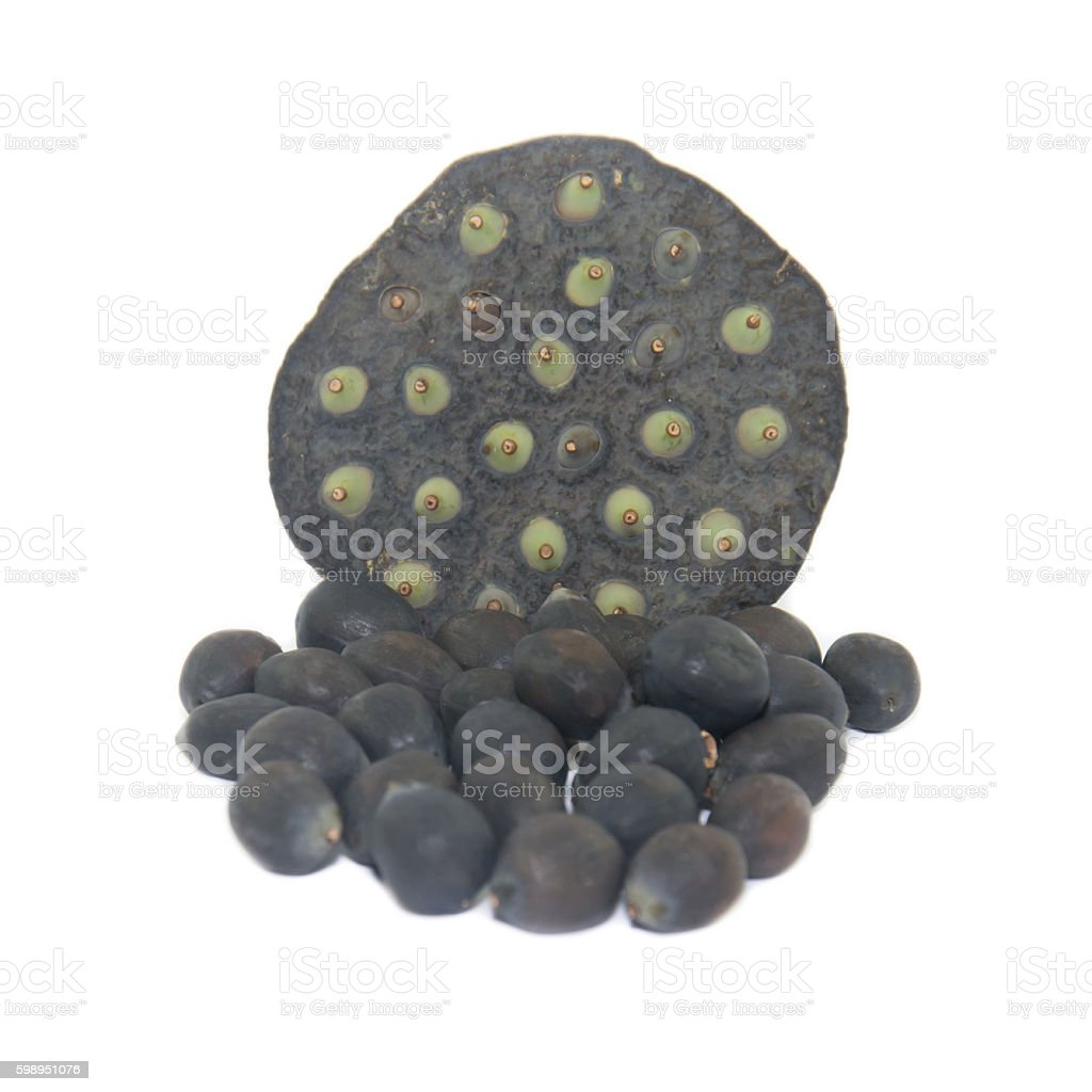 Black lotus seed on white background stock photo