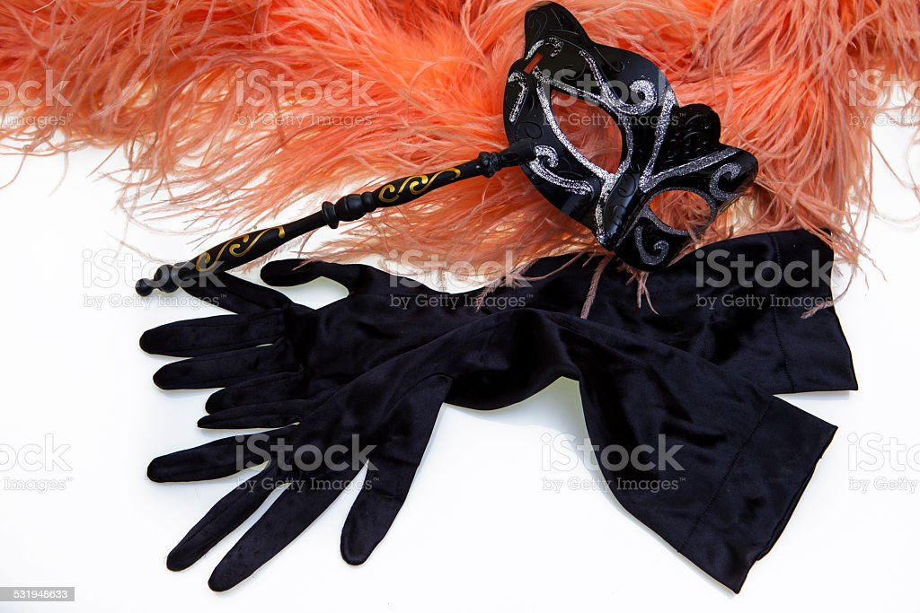 Black Mask Carnival, feather boas and evening gloves stock photo