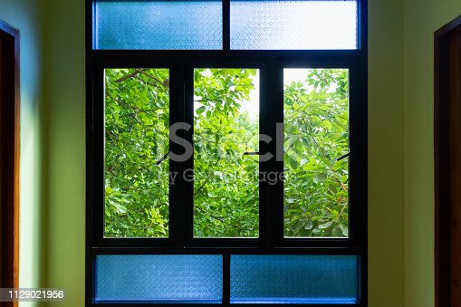 black metallic window frame with green tree nature background