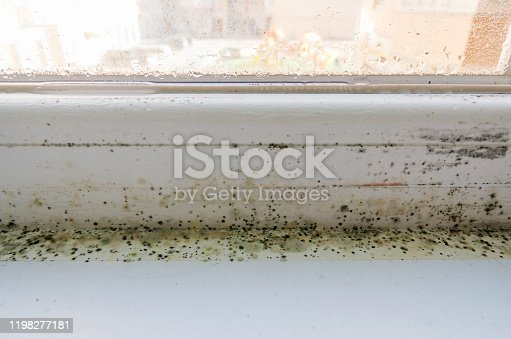 656168432 istock photo Black mold, fungus and condensation on a PVC window. The problem of ventilation, dampness, cold in the apartment, poor installation of window frames, insufficient room heating in winter. 1198277181