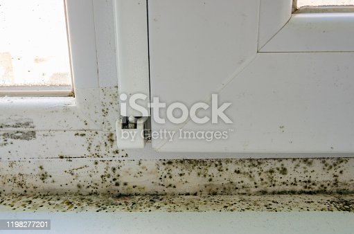 656168432 istock photo Black mold, fungus and condensation on a PVC window. The problem of ventilation, dampness, cold in the apartment, poor installation of window frames, insufficient room heating in winter. 1198277201