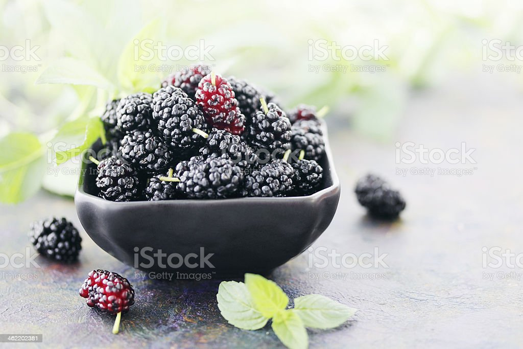Preta mulberry - fotografia de stock