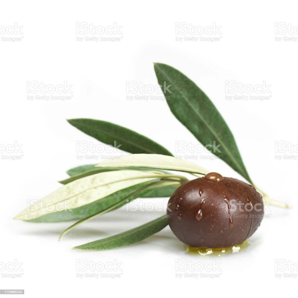 Black olive with leaves stock photo