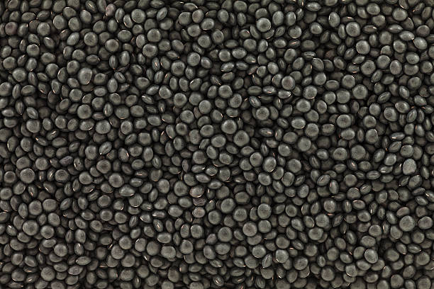Black or beluga lentil background from directly above stock photo