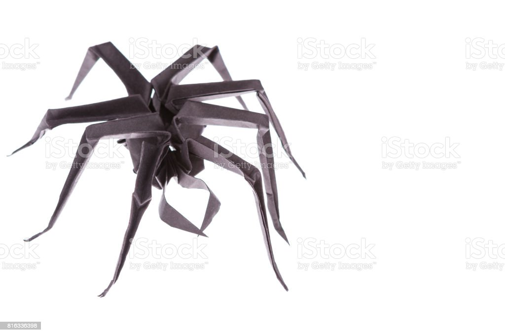 Black paper spider origami, isolated on white stock photo