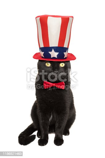 490776989 istock photo Black Patriotic Cat in Hat and Bow Tie 1156521463