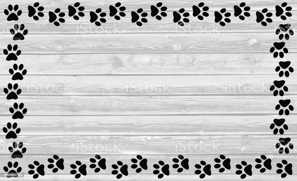 Black paw prints frame on white wooden background. stock photo