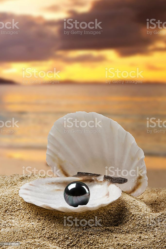 black pearl royalty-free stock photo