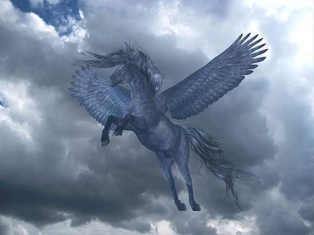 black pegasus in blue sky - pegasus stock photos and pictures