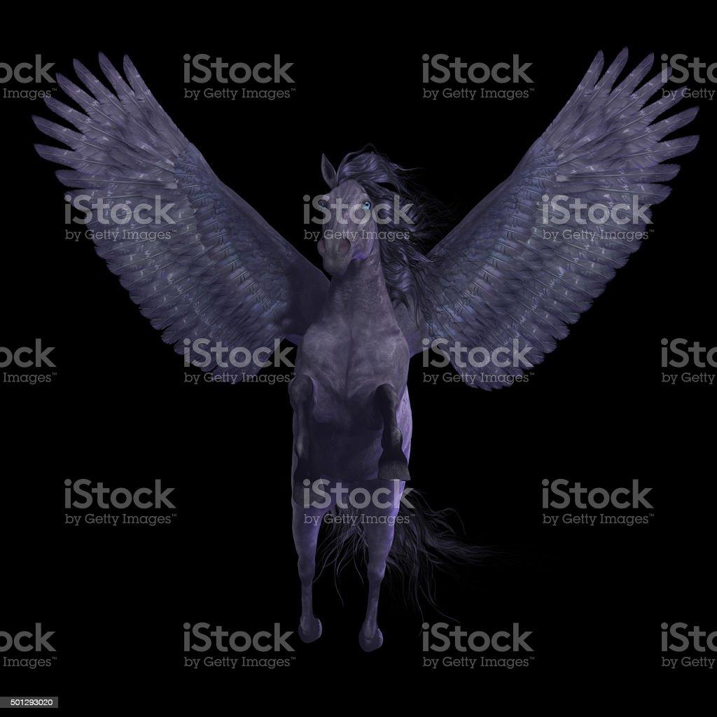 Black Pegasus on Black stock photo