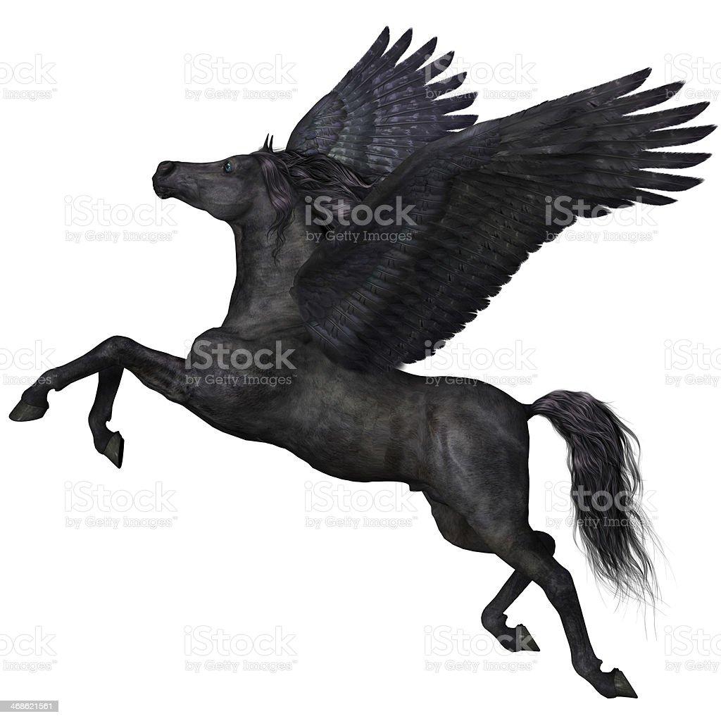 Black Pegasus Profile stock photo