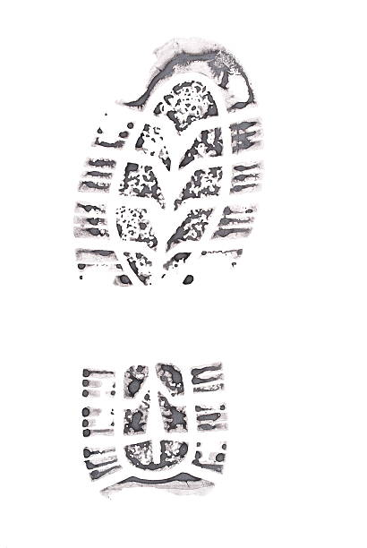 Royalty Free Foot Print Outline Silhouette Pictures Images And