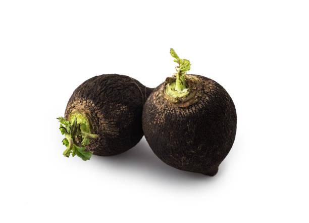 Black Radish , isolated stock photo