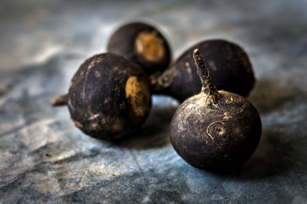Black Radish on rustic background stock photo