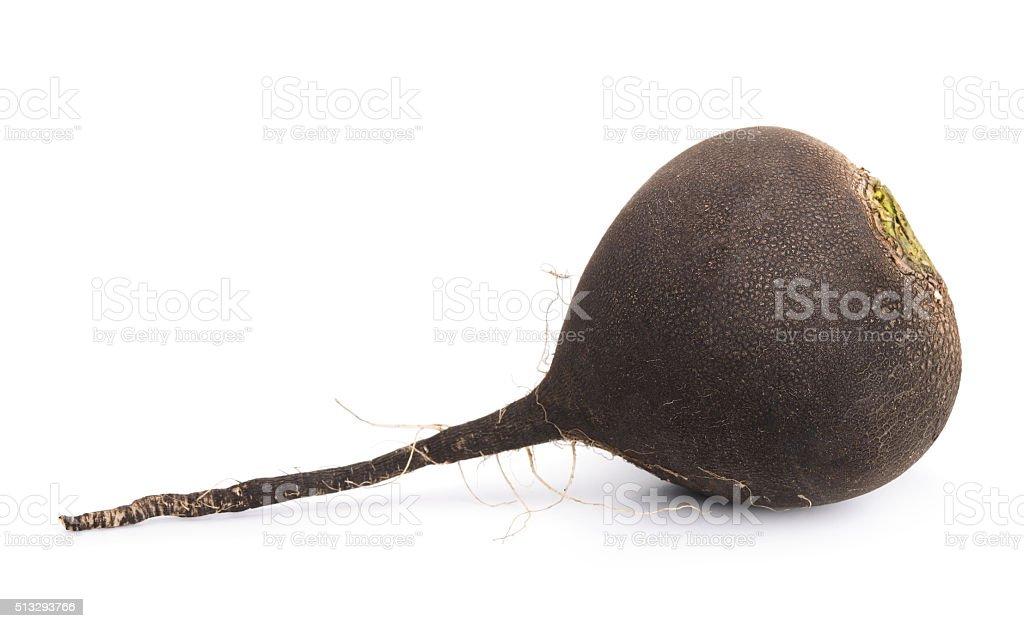 Black radish stock photo