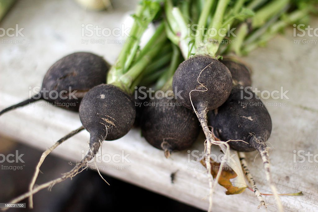 Black Radishes at the Farmer's Market stock photo