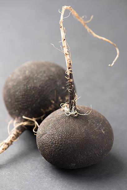 black radishes over gray background stock photo