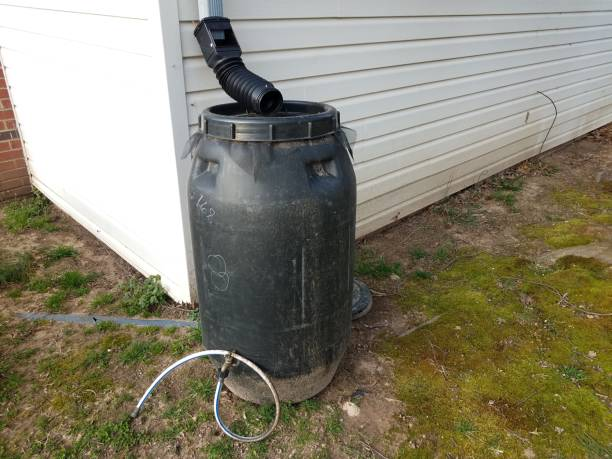 black rain barrel with gutter downspout and hose stock photo