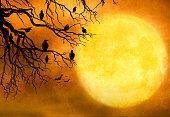 Black ravens sit in a barren tree against a full moon on Halloween night. The night time sky provides ample room for copy and text.