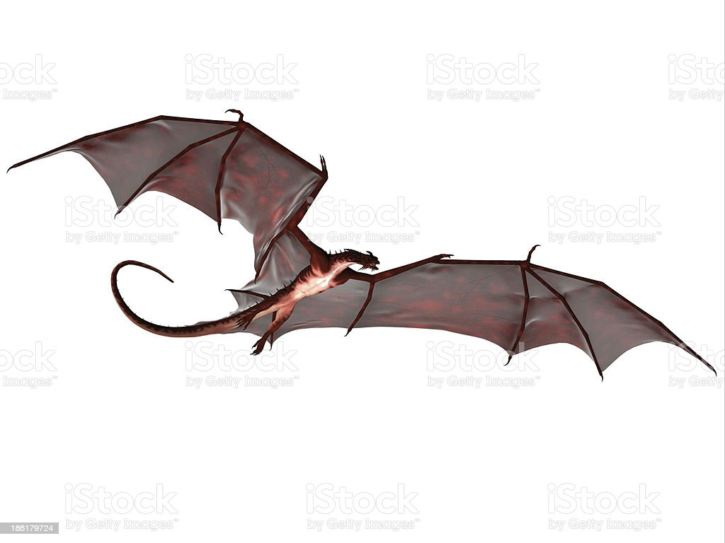 Black Red Dragon stock photo