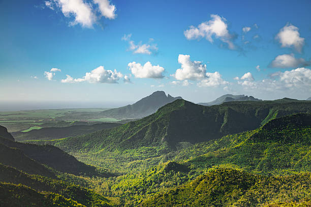 Black River Gorges National Park Mauritius Island View over tropical Mountain Range Black River Gorges National Park on Mauritius Island under blue summer sky. Gorges Viewpoint, Mauritius, Africa. ravine stock pictures, royalty-free photos & images