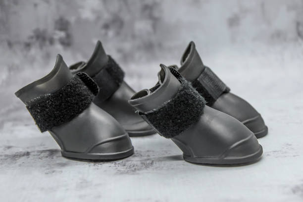 Black rubber boots for dogs with Velcro fastening on gray background.