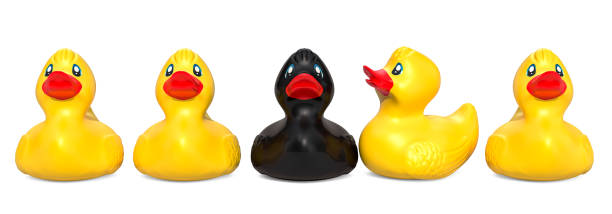 Black rubber duck among yellow rubber ducks. The ugly duckling concept, 3D rendering - foto stock