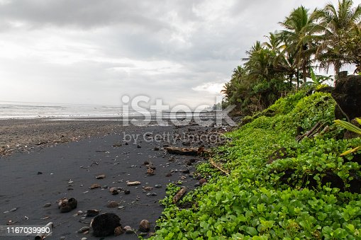 istock Black sand beach with green vegetation in a stormy day in Bali, Indonesia with copy space 1167039990
