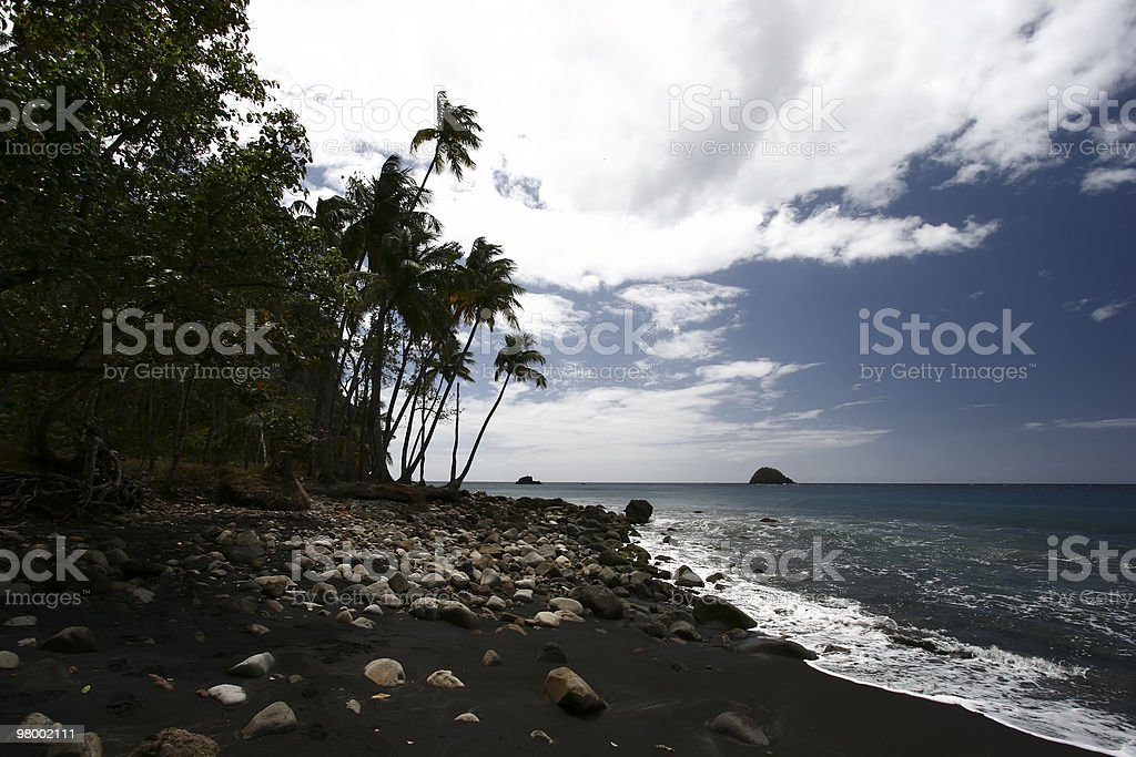 Black sand tropical beach royalty free stockfoto