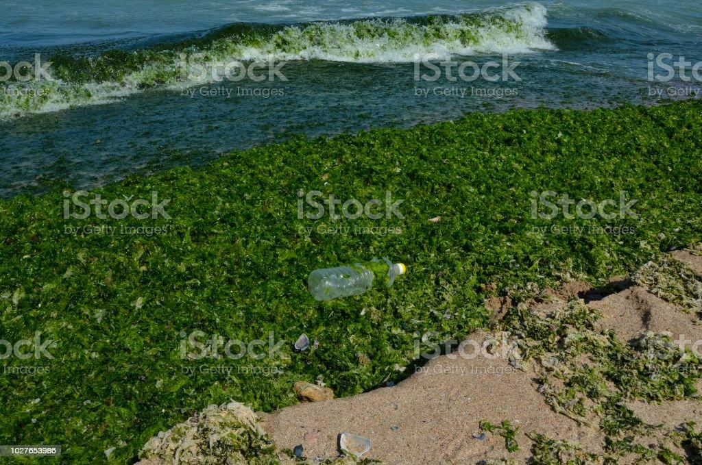 Black Sea Pollution Plastic Waste Cast Ashore On The Beach