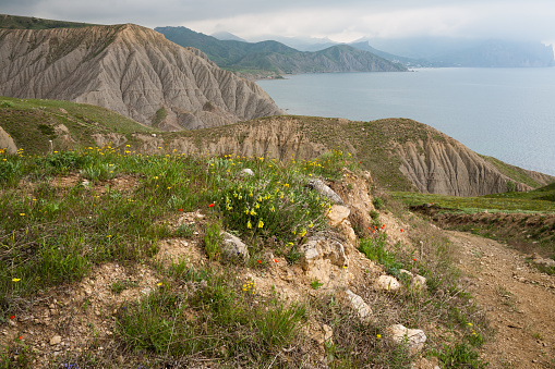 Black Sea seacoast