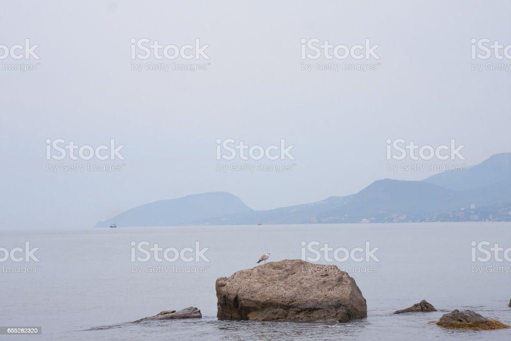 black sea view of Bear Mountain stock photo