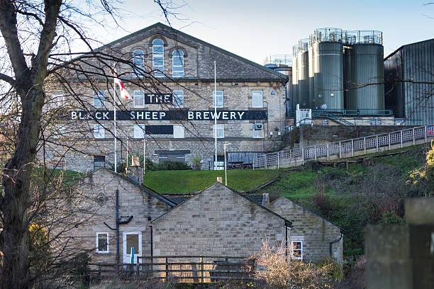 ovelhas negras masham cervejaria construção em yorkshire, inglaterra. - standing out from the crowd (expressão inglesa) - fotografias e filmes do acervo