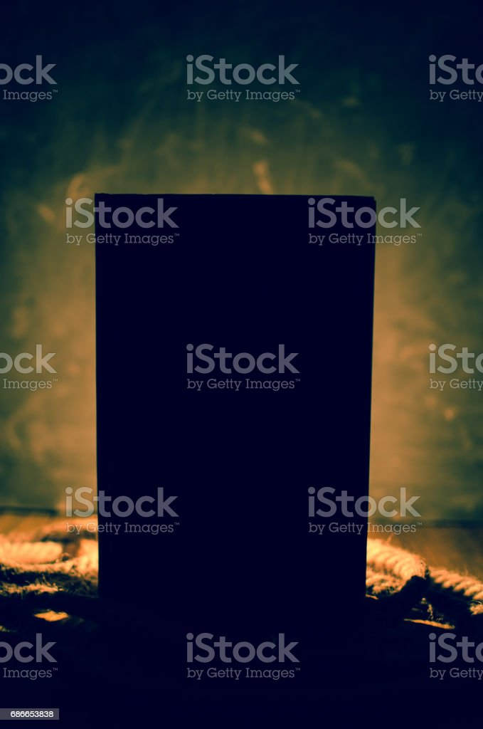 Black silhouette against the light royalty-free stock photo